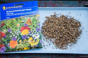 Schmetterlingswiese Kiepenkerl