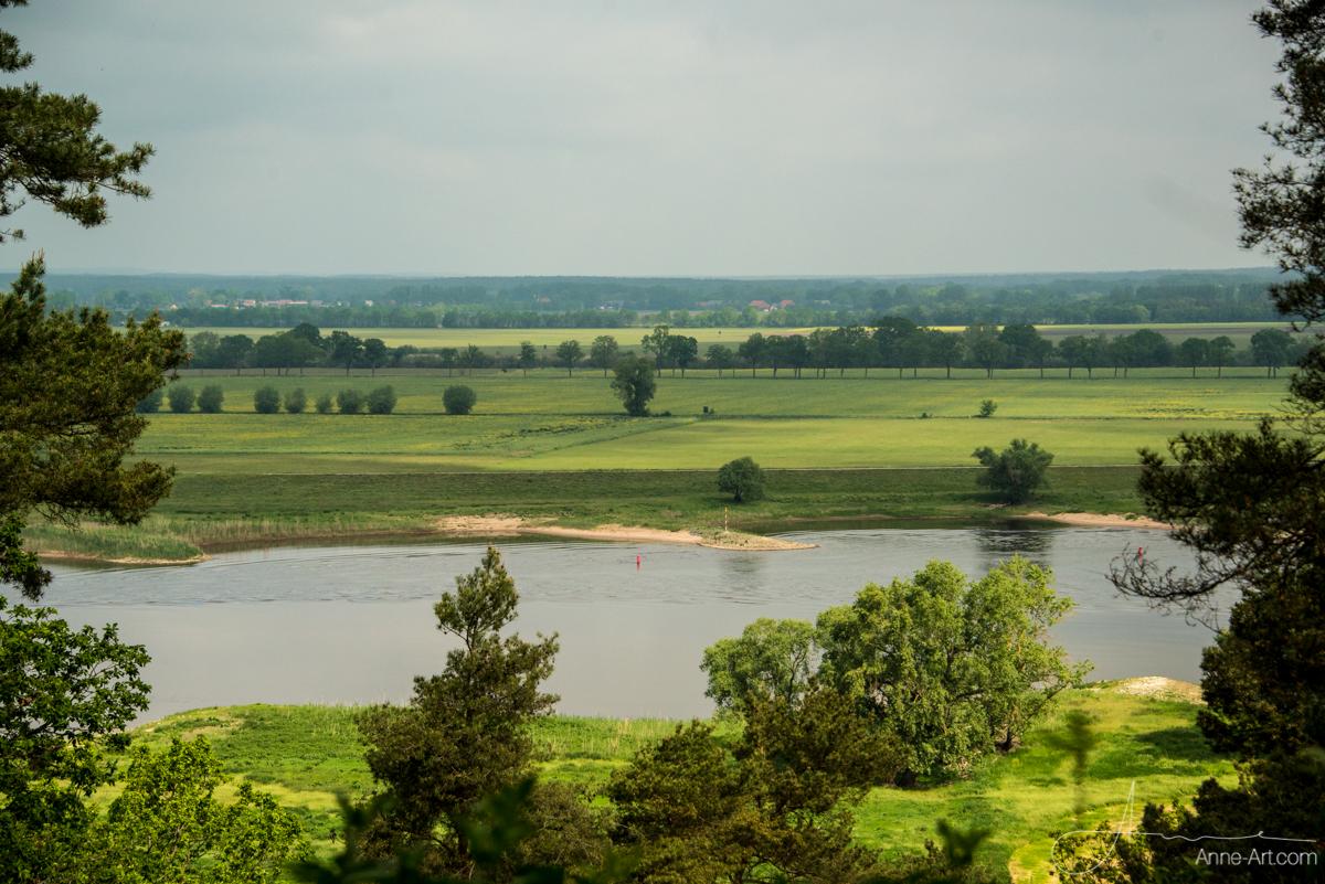 Blick vom Höhbeck auf die Elbe