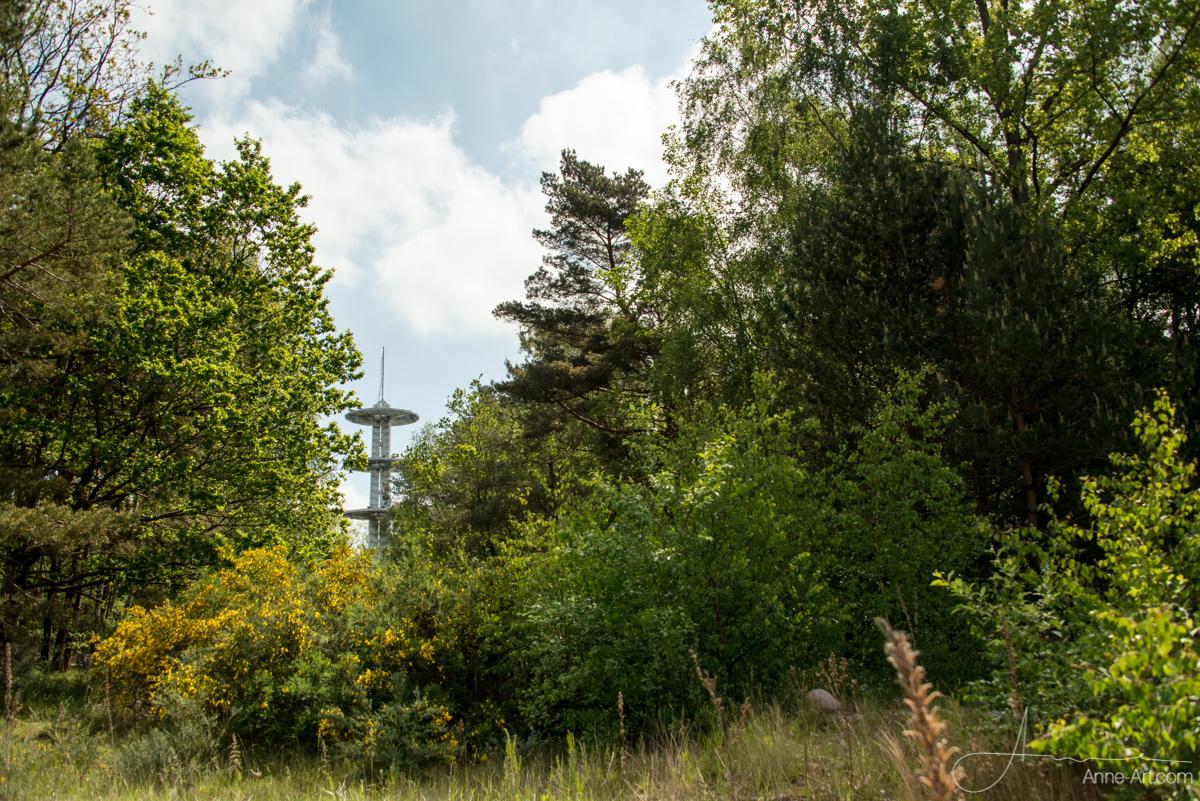 Turm auf dem Höhbeck