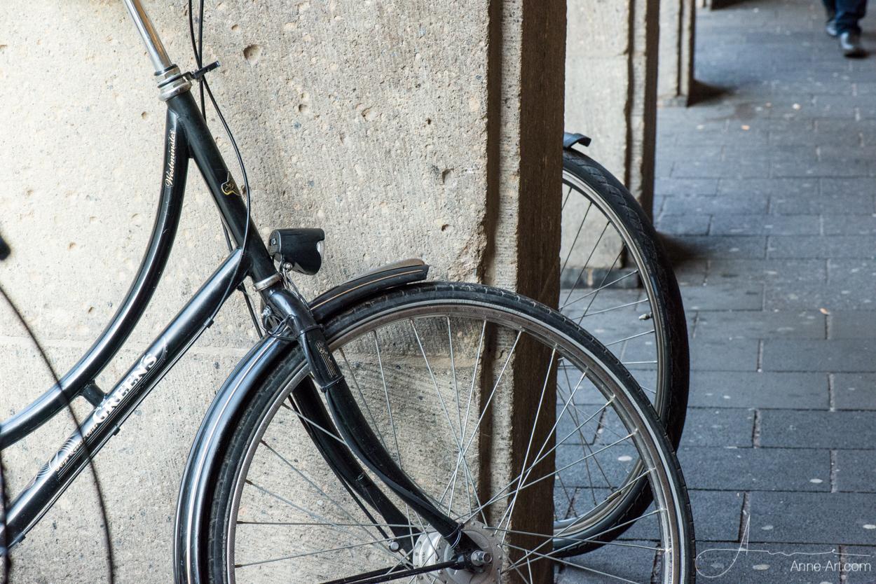 Räder in Münster