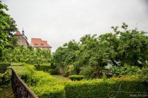 Blick vom Ehrenhof zum Alten Schloss